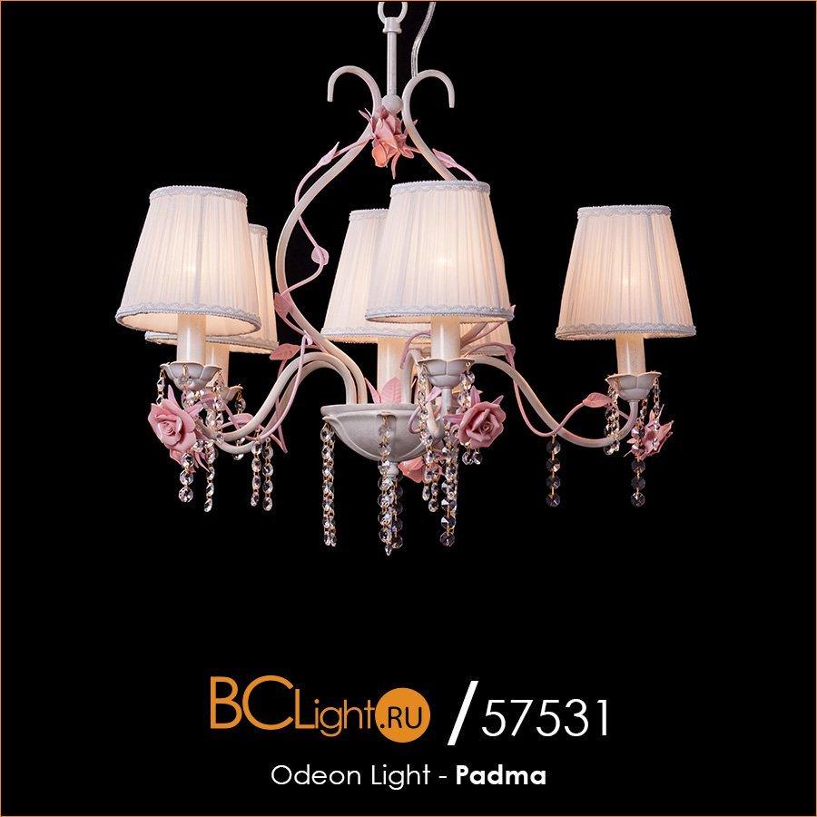 Полный обзор подвесной люстры 2685/6 серии Padma от Odeon Light