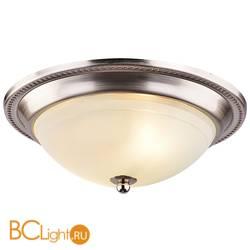 Потолочный светильник Arte Lamp Alta A3011PL-2SS