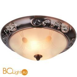 Потолочный светильник Arte Lamp Alta A3014PL-2AC