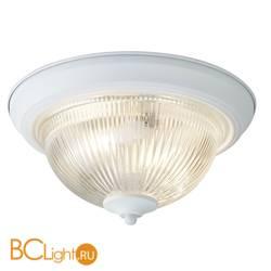 Потолочный светильник Arte Lamp Aqua A9370PL-2WH