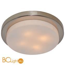 Потолочный светильник Arte Lamp Aqua A8510PL-4SS