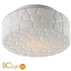 Потолочный светильник Arte Lamp Aqua A5320PL-1WH