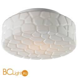 Потолочный светильник Arte Lamp Aqua A5325PL-2WH