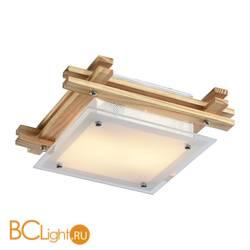 Потолочный светильник Arte Lamp Archimede A6460PL-2BR