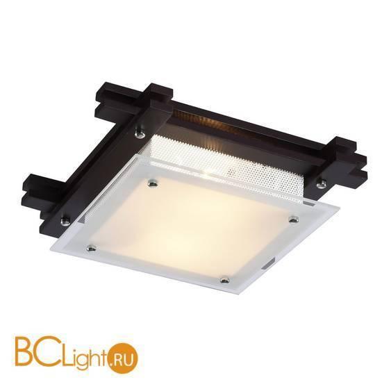Потолочный светильник Arte Lamp Archimede A6462PL-2CK
