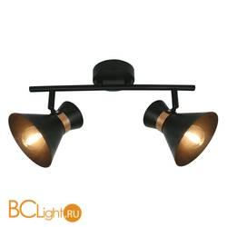 Спот (точечный светильник) Arte Lamp Baltimore A1406AP-2BK