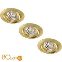 Потолочный светильник Arte Lamp BASIC A2105PL-3GO
