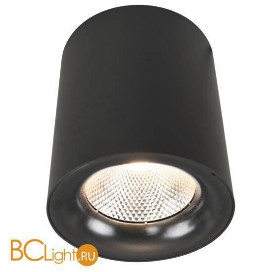 Потолочный светильник Arte Lamp Facile A5118PL-1BK