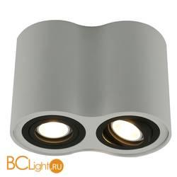 Потолочный светильник Arte Lamp Falcon A5644PL-2WH