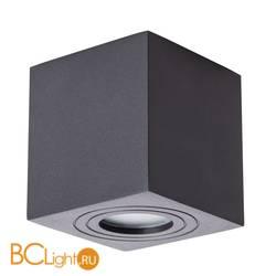 Потолочный светильник Arte Lamp Galopin A1461PL-1BK