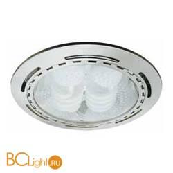 Потолочный светильник Arte Lamp GENERAL A8075PL-2SS