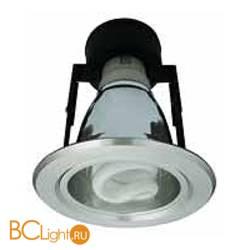 Потолочный светильник Arte Lamp GENERAL A8044PL-1SI