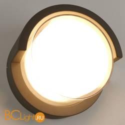 Настенный светильник Arte Lamp Lancia A8159AL-1GY