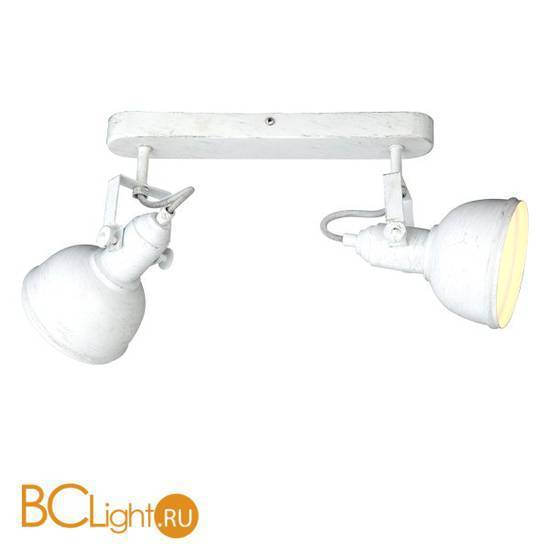Потолочный светильник Arte Lamp Martin A5213AP-2WG