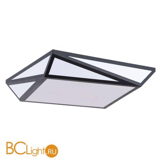 Потолочный светильник Arte Lamp Multi-Piazza A1929PL-1BK