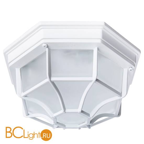 Уличный потолочный светильник Arte Lamp Pegasus A3100PL-1WH