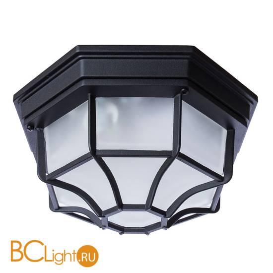 Уличный потолочный светильник Arte Lamp Pegasus A3100PL-1BK