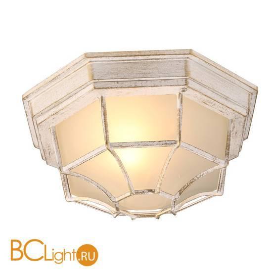 Уличный потолочный светильник Arte Lamp Pegasus A3121PF-1WG