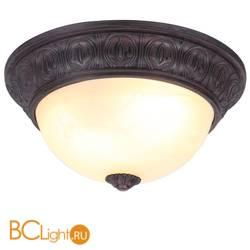 Потолочный светильник Arte Lamp Piatti A8007PL-2CK