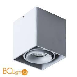 Потолочный светильник Arte Lamp Pictor A5654PL-1GY