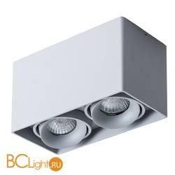 Потолочный светильник Arte Lamp Pictor A5654PL-2GY