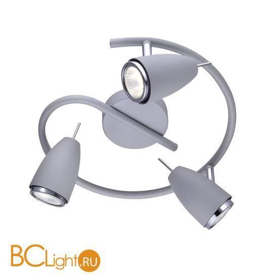 Потолочная люстра Arte Lamp Regista A1966PL-3GY