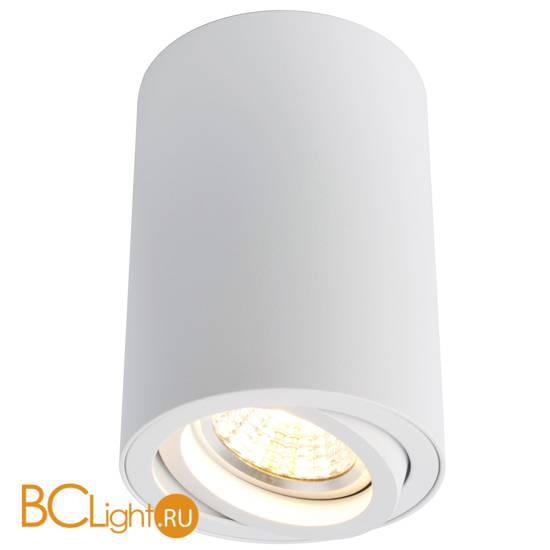 Потолочный светильник Arte Lamp Sentry A1560PL-1WH
