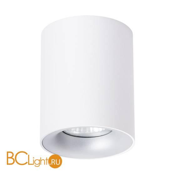 Потолочный светильник Arte Lamp Torre A1532PL-1WH