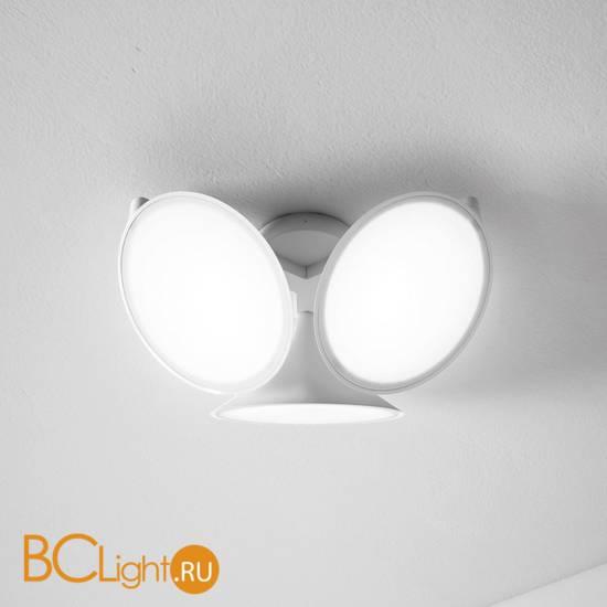 Потолочный светильник Axo Light Orchid PL ORCHID BC XX LED
