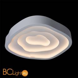 Потолочный светильник Chiaro Эдем 668010203