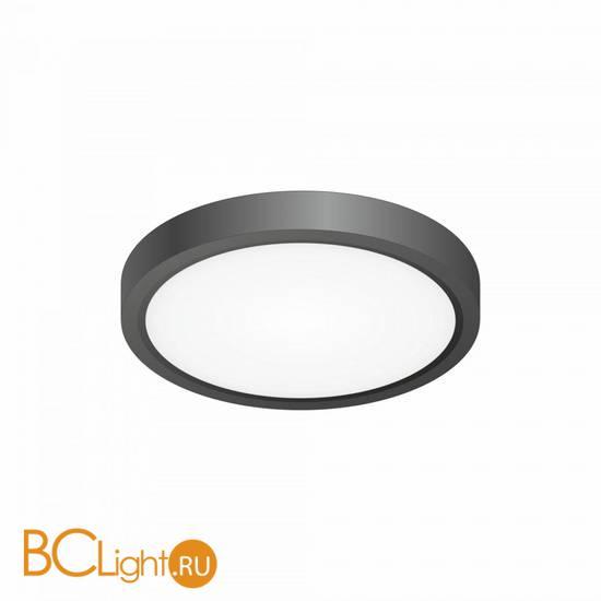 Потолочный светильник Citilux Бейсик CL738121N