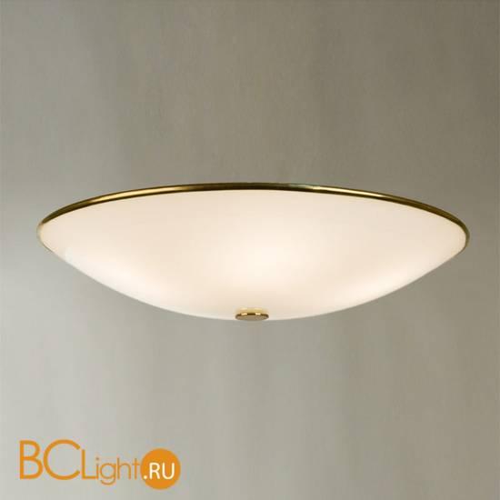 Потолочный светильник Citilux 911 CL911602