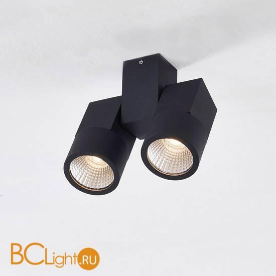 Спот (точечный светильник) Citilux Дубль CL556102