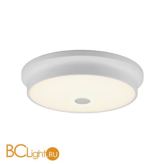 Потолочный светильник Citilux Фостер CL706230