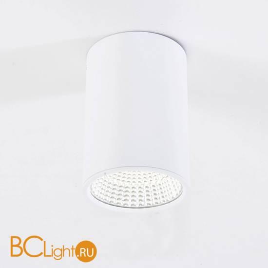 Спот (точечный светильник) Citilux Стамп CL558100