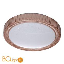 Потолочный светильник De Markt Ривз 674014001