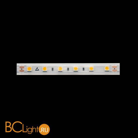 Светодиодная лента DesignLed 003350 14.4Вт 24В IP65 2700K 1340 Lm/m DSG560-24-WW-65