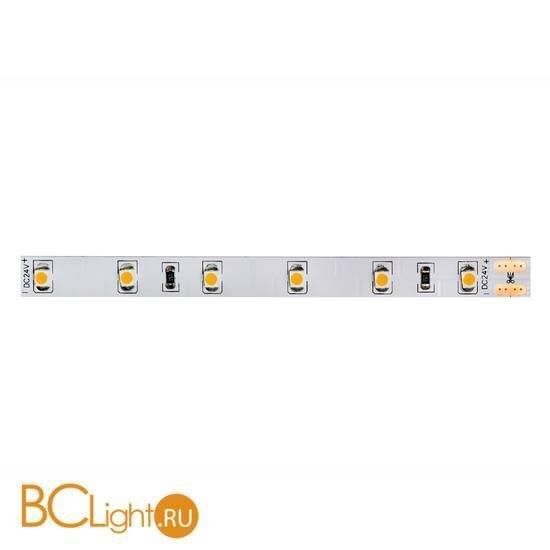 Светодиодная лента Donolux DL-18321/N.White-24-60