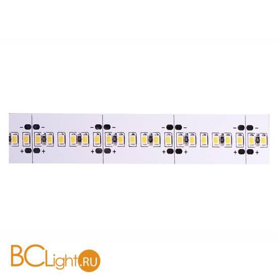 Светодиодные ленты Donolux DL-18331/N.White-24-240
