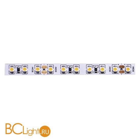 Светодиодная лента Donolux DL-18381/N.White-24-120 24V 9.6W 4000K 720Lm IP20