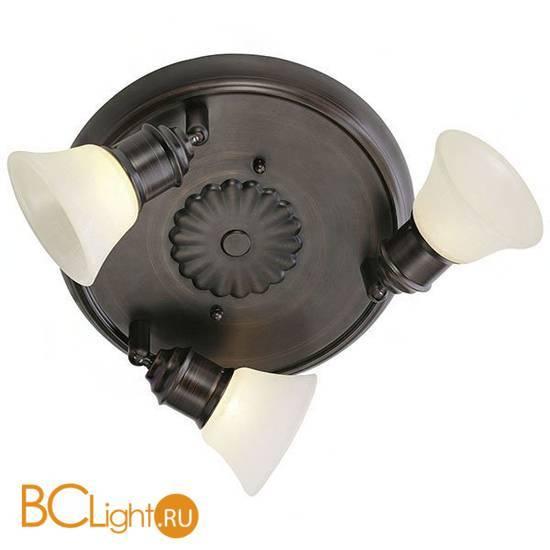 Спот (точечный светильник) Eglo Alamo 89061