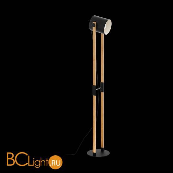 Напольный светильник Eglo Hornwood 43048