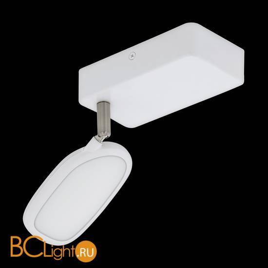 Настенно-потолочный светильник Eglo Palombare-C 97691