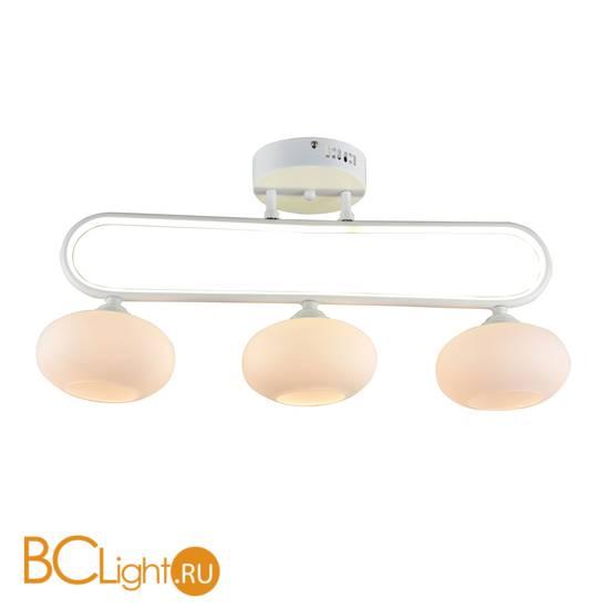 Потолочный светильник Escada 10237/3LED