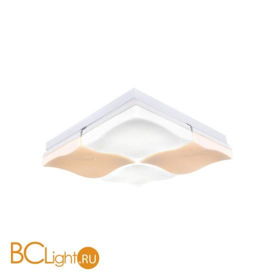 Потолочный светильник Escada 10241/4LED