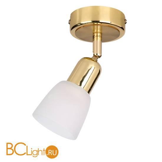 Cпот (точечный светильник) Escada 5039/1PA