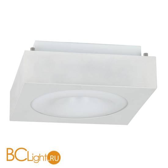 Потолочный светильник Escada 601-602 601/PL LED