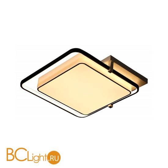 Потолочный светильник Escada 10242/2LED