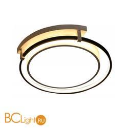 Потолочный светильник Escada 10243/2LED