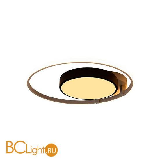 Потолочный светильник Escada 10244/2LED
